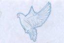 2017-01-01, Діти мріють про мир